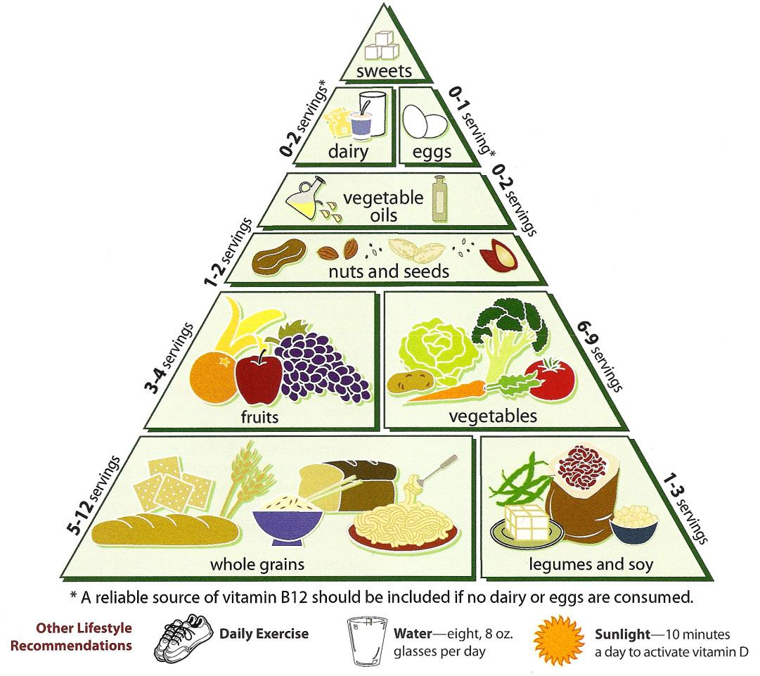 The Ultimate Guide To The Vegan Diet Food Pyramid