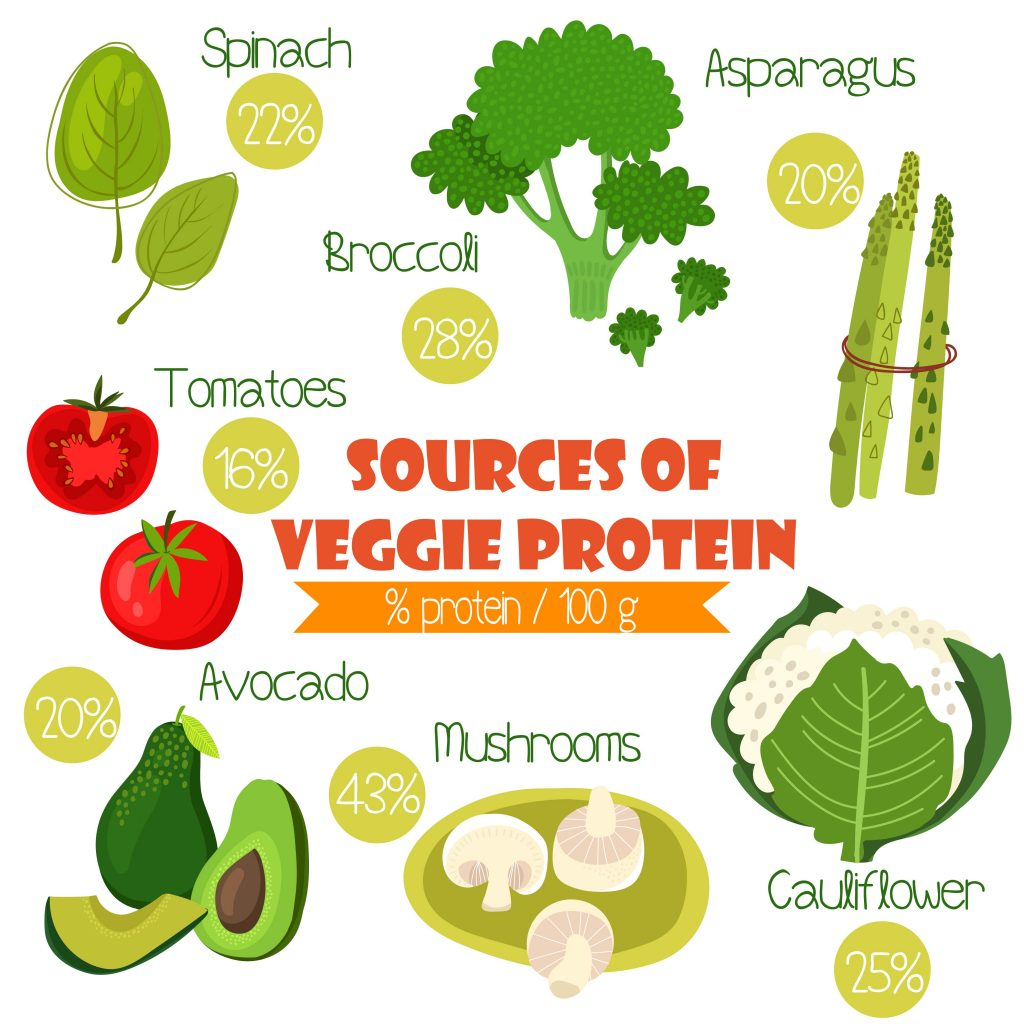 The Ultimate Guide To The Vegetarian Diet Protein