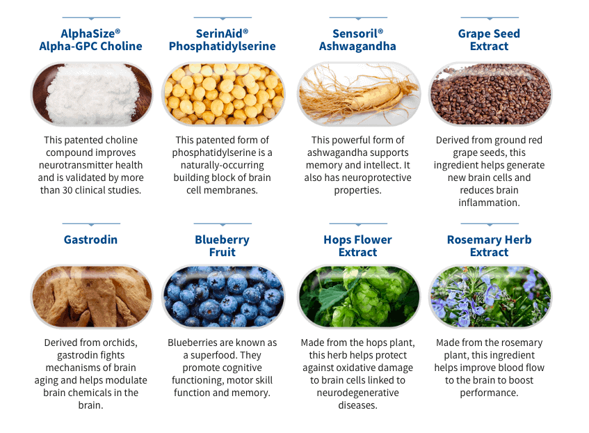 Genbrain Ingredients