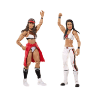 Nikki & Brie Bella action figures