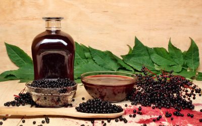 Best Elderberry Supplements – Our Top 4 Choices