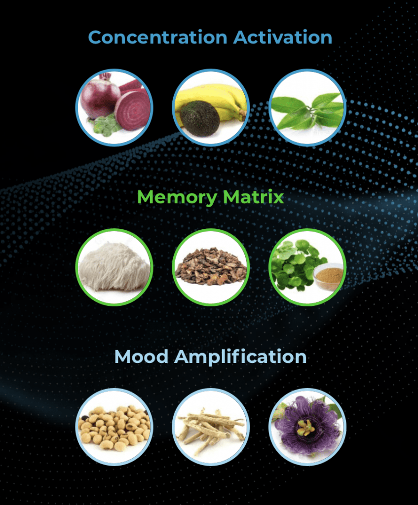 Hunter Focus Nootropic Ingredients