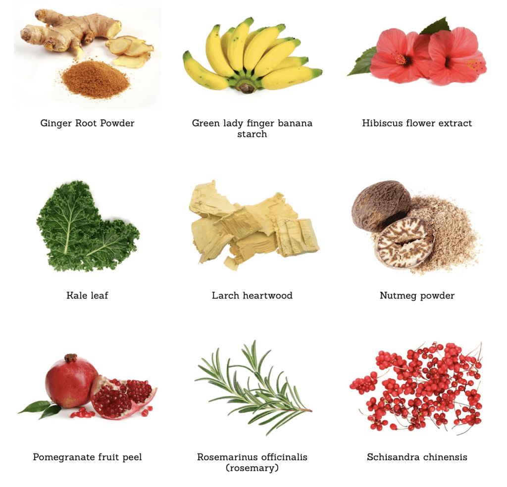 ATP Science Gutright ingredients 1
