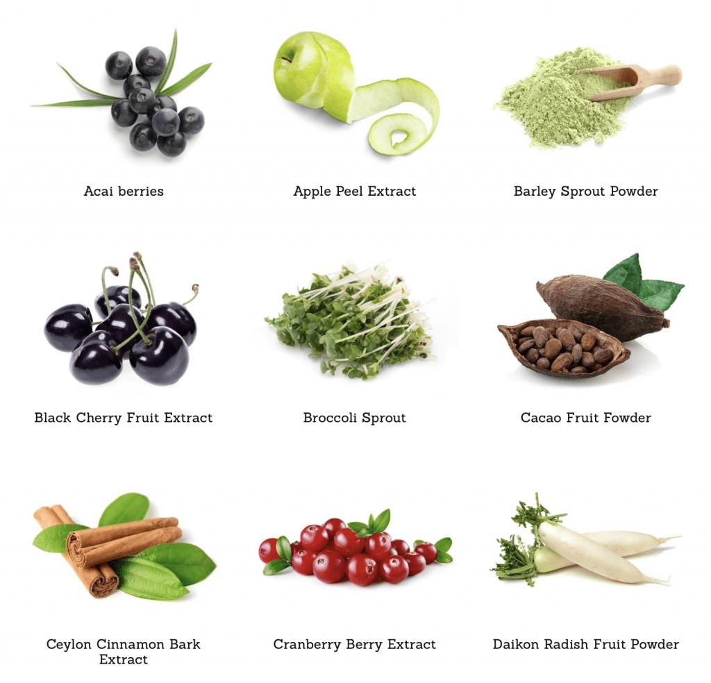 ATP Science Gutright ingredients 2