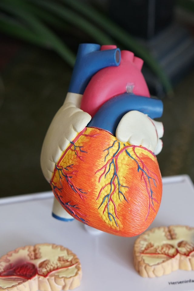 Berberine for heart health
