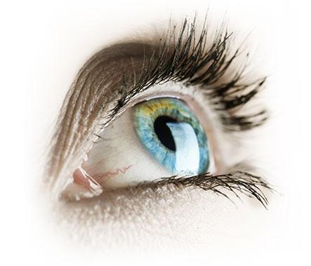 Lutenol for eyes