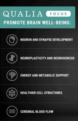Qualia Focus Benefits