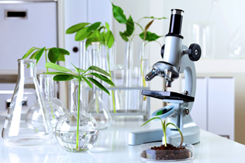 Arthrozene Supplement Research