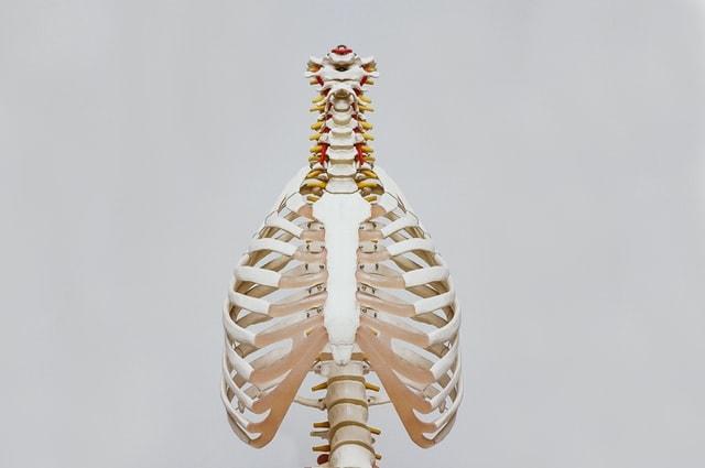 Vitamins For Bones