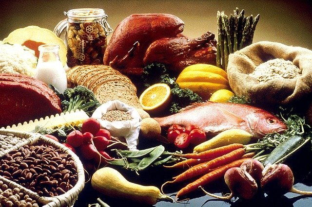 Foods Dr. Gundry Recommends
