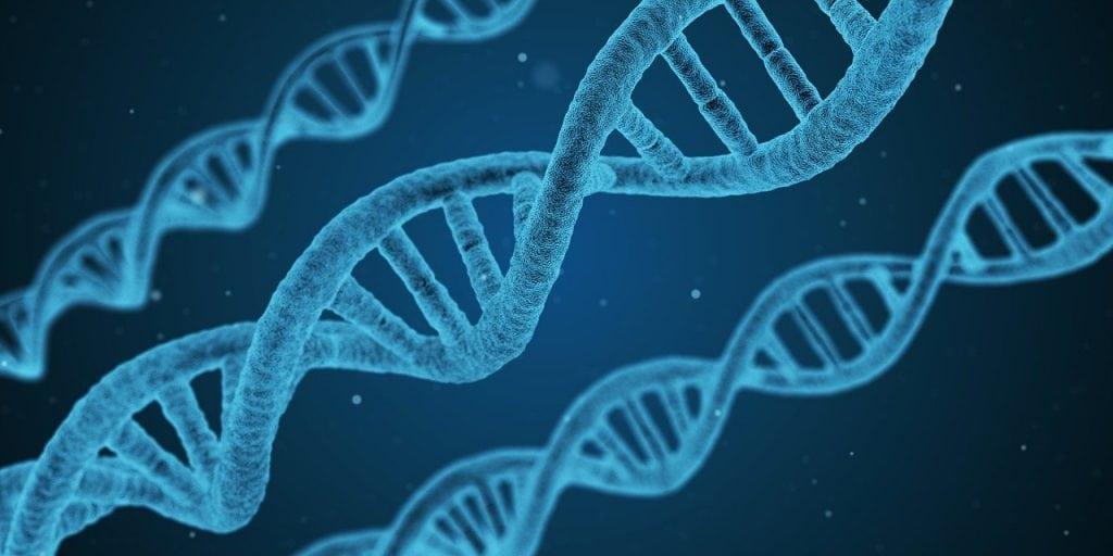 Alpha-Lipoic Acid Pills For Cells