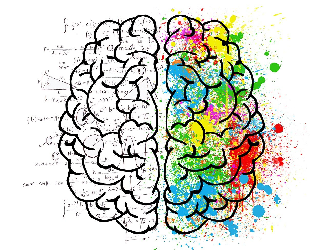 Brain-Gut Axis – The Complete Guide