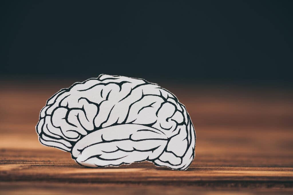 Best Natural Nootropics – Top 4 Picks For Better Brain Power