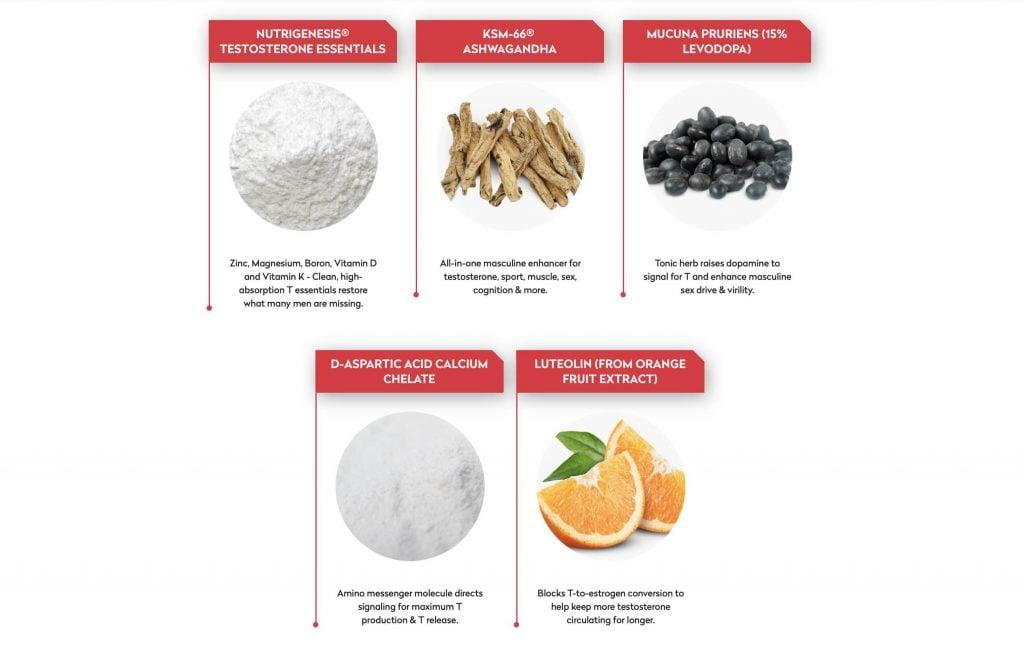 Testo Lab Pro Vitamins And Minerals