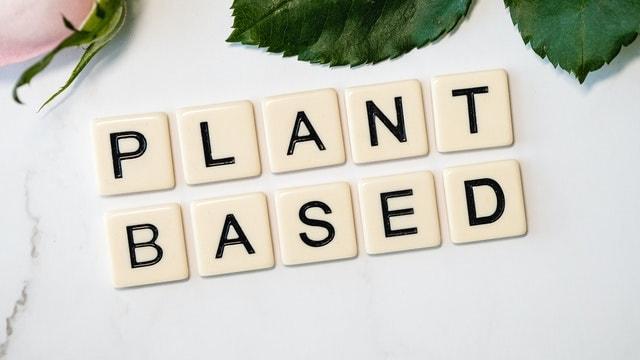 Biochem Plant Protein Plant-Based Source