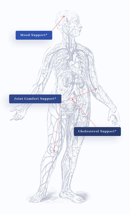 KrillMD Health Benefits