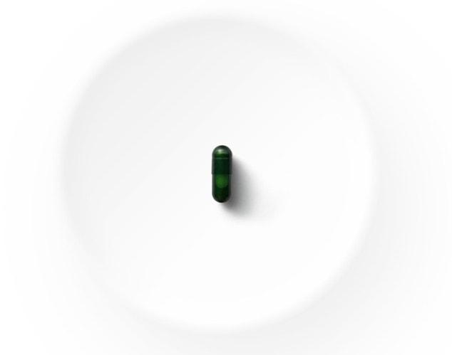 Seed Probiotic