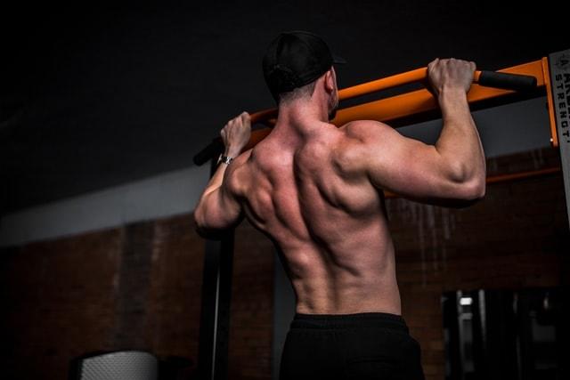 REBAAR Supports Muscle Building